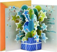Paper Wonder Pop Up Birthday Card by Hallmark - (Someone to Celebrate)